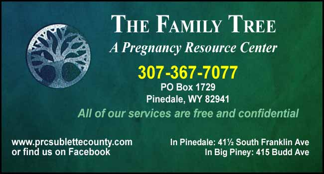 The Family Tree (Pregnancy Resource Center)